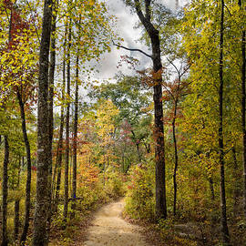 Debra and Dave Vanderlaan - Trail in Autumn