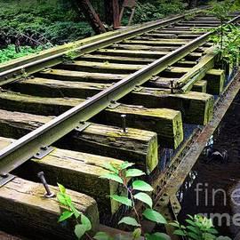 Paul Ward - Train - Railroad Trestle