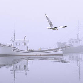 Marty Saccone - Tranquil Morning Fog