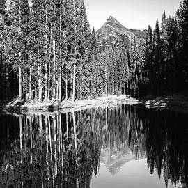 Jerry Cowart - Tranquil Lake Reflections Tuolumne Meadows Mountain Pine Trees Yosemite National Park Black And Whit