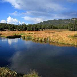 Aidan Moran - Tranquil Yellowstone