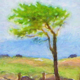 Lutz Baar - Tree at the Coast