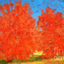 Luther  Fine Art - Tree - Autumn Wonder - Luther Fine Art