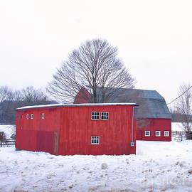 Marcel  J Goetz  Sr - Tree between the barns.
