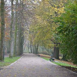 Imran Ahmed - Tree lined path in Fall season Bruges Belgium