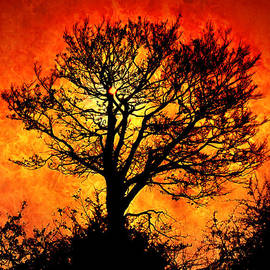 Persephone Artworks - Tree of Fire