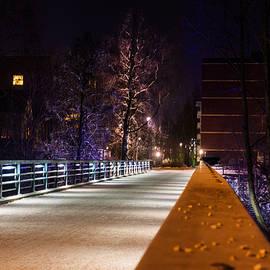 Jukka Heinovirta - Tree On The Other Side Of The Bridge
