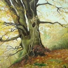 Sorin Apostolescu - Tree