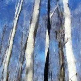 Michelle Calkins - Tree Stand in Early Spring