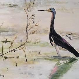 Sharon  De Vore - Tricolored Heron