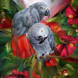 Carol Cavalaris - Tropic Spirits - African Greys