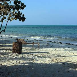 Aidan Moran - Tropical Beach - Zanzibar