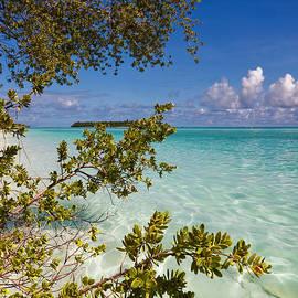 Jenny Rainbow - Tropical Island