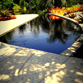 Irma BACKELANT GALLERIES - Tropical Lagoon