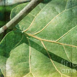 Arlene Carmel - Tropical Leaf