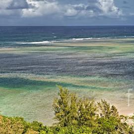 Sheldon Kralstein - Tropical Panorama