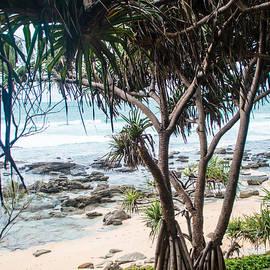 Parker Cunningham - Tropical Paradise