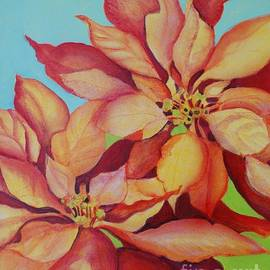 Susan Alden - California Pointsettias