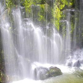 Venetia Featherstone-Witty - Tropical Waterfall