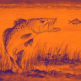 Bill Holkham - Trout Attack 2 In Orange