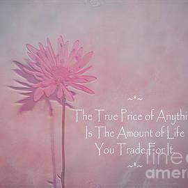 Adri Turner - True Price