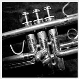 Photographic Arts And Design Studio - Trumpet Triptych