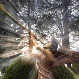 Gene Walls - Trumpeting Angel