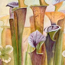 K Alan Jarrett - Trumpets of pitcher plants