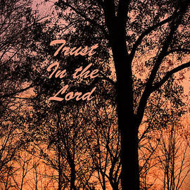 Lorna Rogers Photography - Trust In The Lord