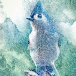 Debbie Portwood - Tufted Titmouse StandingTall - Colored Pencil