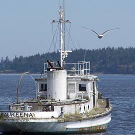Patti Walden - Tugboat At Anchor