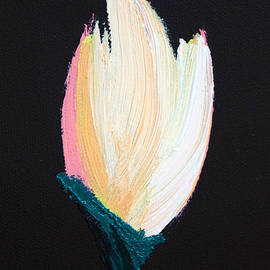 Karen Nicholson - Tulip 1