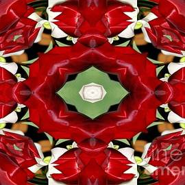 Rose Santuci-Sofranko - Tulip and Easter Lily Abstract 2