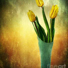 Shirley Mangini - Tulip Bouquet