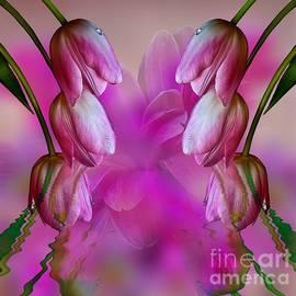 Shirley Mangini - Tulip Fantasy