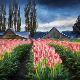 Mary Jo Allen - Tulip Farm