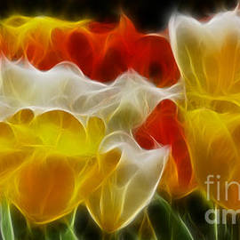 Gary Gingrich Galleries - Tulips-6714-Fractal