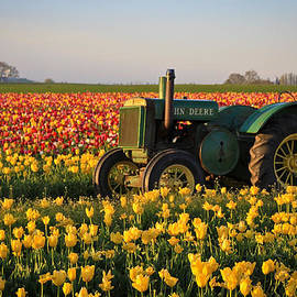 Steve McKinzie - Tulips and Tractors