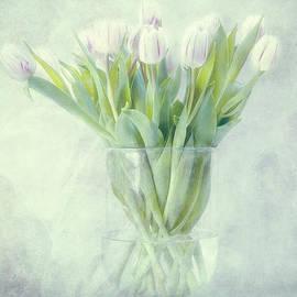 Claudia Moeckel - Tulips