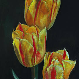Janet Pancho Gupta - Tulips