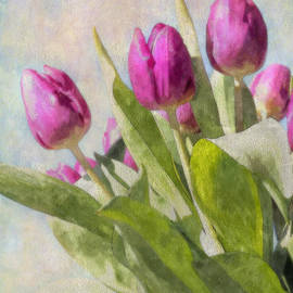 Julie Woodhouse - Tulips