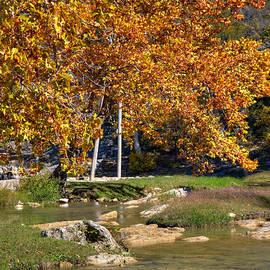 Ricky Barnard - Turner Falls Park IV
