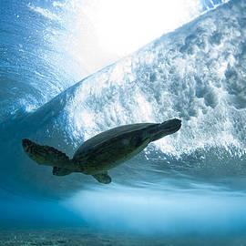 Sean Davey - Turtle clouds