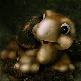 Diane Bradley - Turtle