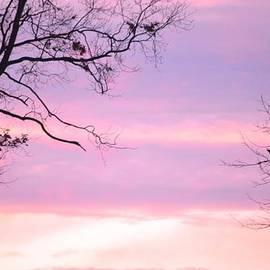 Sonali Gangane - Twilight Moment