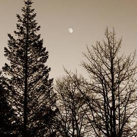 Marilyn Hunt - Twilight Moon