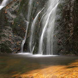 Juergen Roth - Twirling Leaves at Moss Glen Waterfall