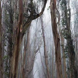 Dustin  LeFevre - Twisted Path