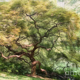Lois Bryan - Twisty Tree