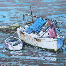 Martin Davey - Two boat wrecks at low tide